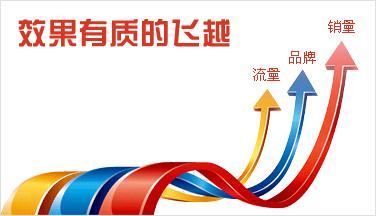 网站建设与网络推广_重庆SEO_见效付费(图5)