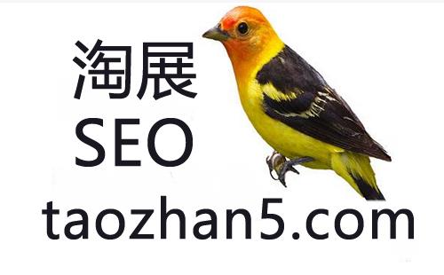 重庆建网站机构排名_重庆炽绎SEO_见效付费(图5)