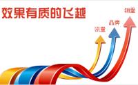 最好的重庆网站推广